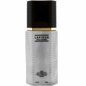 Perfume Ted Lapidus Masculino 100ml - Ted Lapidus