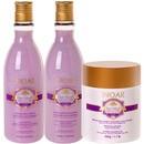 natural collection camélia hair kit (3 produtos)
